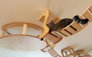 Игровой комплекс для кошек: купить или сделать своими руками