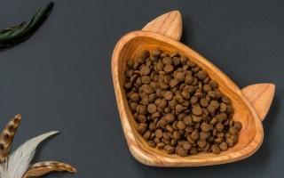 Качественные сухие корма для кошек  делаем осознанный выбор и составляем рацион правильно