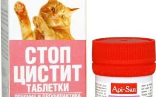 Применение Монурала у кошек при цистите