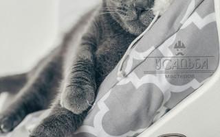 Лежаки и домики для кошек купить в интернет-магазине