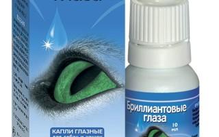 Какие глазные капли для кошек бывают? Капли для кошек от гноя в глазах: обзор средств Глазные капли для котов при воспалении