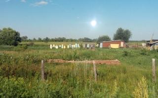 Правила содержания пчел: в частном секторе, населенных пунктах