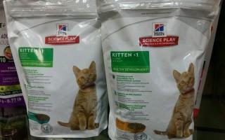 Какой корм для котят лучше советы и рекомендации