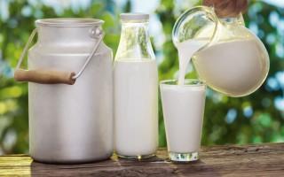Домашнее животноводство сколько раз доят корову